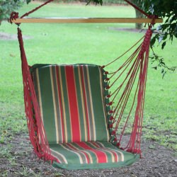 Single Cushioned Swing - Garden